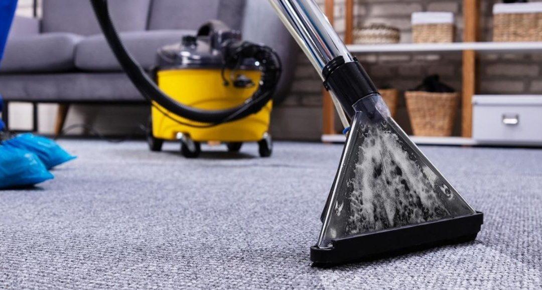 5 Reasons to choose Blitz as your professional carpet cleaner