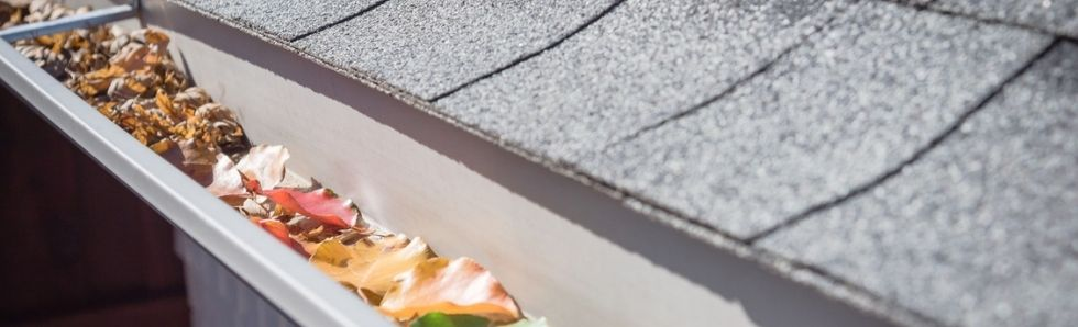3 Reasons to Book a Professional Gutter Cleaning Service