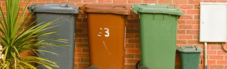 Wheelie Bin Cleaning – Is it a 'Must'?