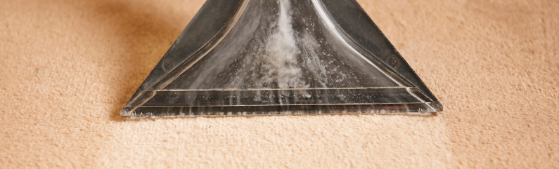 How often should you get your carpets professionally cleaned?