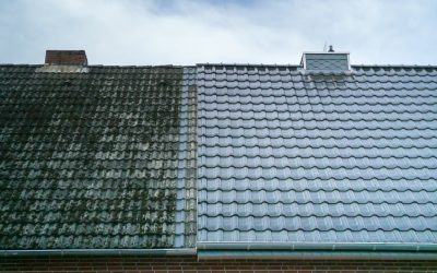 Roof Cleaning: Why is it important and when should you have it done?